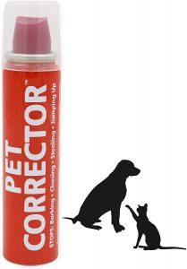 Training Kit for the dog correction